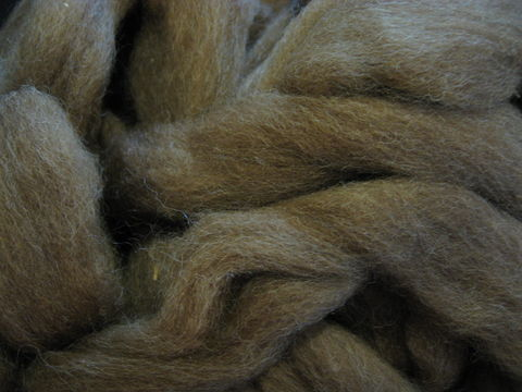 Natural,Color,Brown,Tasmanian,Wool,Roving,wool, wool roving, natural color roving, brown roving, spinning, spinning roving, spinning wool, felting, felting wool,Tasmanian wool,Tasmanian roving, BrushCreekWoolWorks, Brush Creek Wool Works
