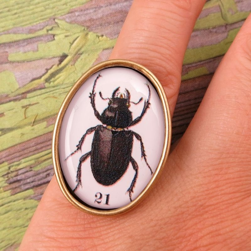 Beijo Brasil Natural World Resin Image Ring - Beetle - product image