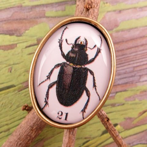 Beijo,Brasil,Natural,World,Resin,Image,Ring,-,Beetle,Beijo Brasil Natural World Resin Image Beetle Ring, Beijo Brasil, Beijo Brasil Beetle ring, Beetle ring