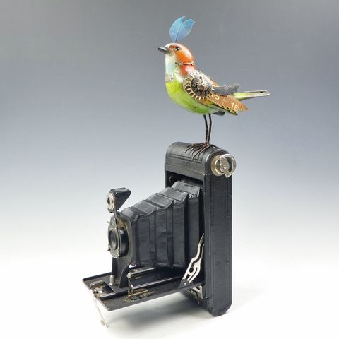 Mullanium,Bird,-,Green,and,Red,On,Vintage,Camera,Mullanium Green and Red Bird On Vintage Camera, Mullanium Bird, steampunk bird