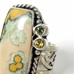 Echo of the Dreamer Sterling Silver Rectangle Ocean Jasper Ring - product images 4 of 6